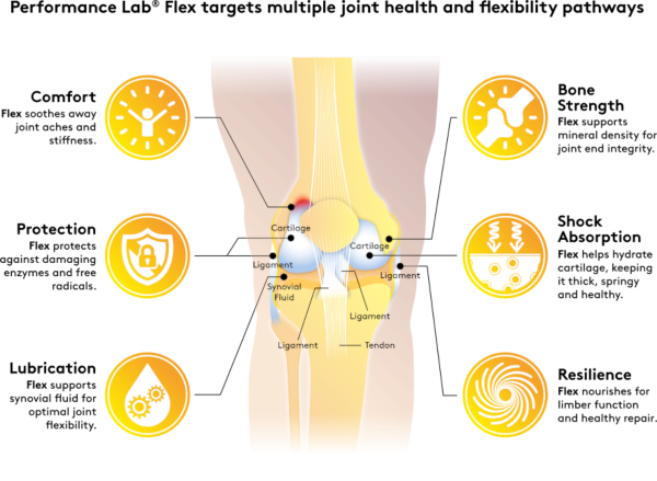 Top joint supplement benefits